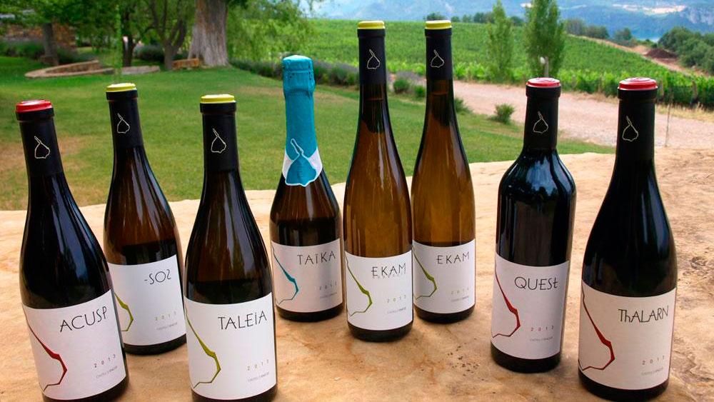 Castell d'Encús, vinos gourmet de los Pirineos